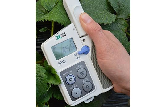 日本进口SPAD-502PLUS叶绿素测定仪