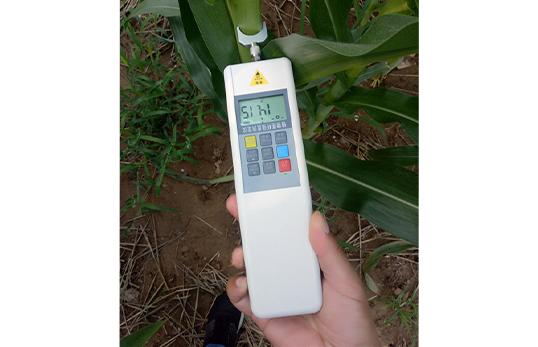JC-KDF植物抗倒伏测定仪